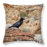 Jet Black Desert Dweller Throw Pillow