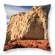 Desert Elephant Throw Pillow