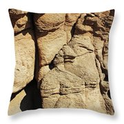 Desert Face 2 Throw Pillow