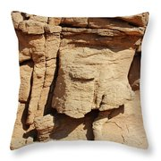Desert Face Throw Pillow
