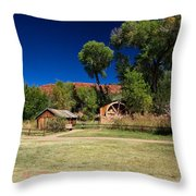 Desert Field Throw Pillow