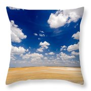 Desert Flatlands Throw Pillow