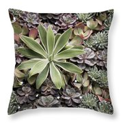Desert Flora Throw Pillow