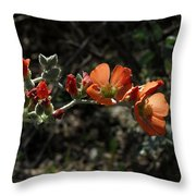 Desert Globemallow Throw Pillow