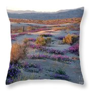 Desert In Bloom Throw Pillow