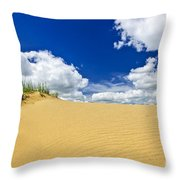 Desert Landscape In Manitoba Throw Pillow