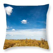 Desert Landscape With Deep Blue Sky Throw Pillow