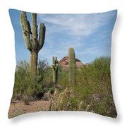 Desert Landscape With Saguaro Throw Pillow