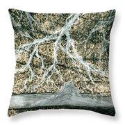 Desert Lightning Throw Pillow