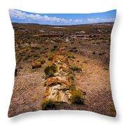 Desert Log Throw Pillow