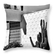 Desert Modern Bw Palm Springs Throw Pillow