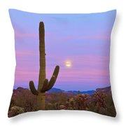 Desert Moon Throw Pillow by Rick Furmanek