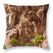 Desert Mountain Throw Pillow
