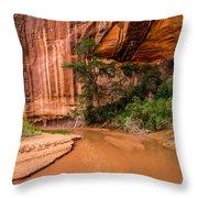 Desert Oasis - Coyote Gulch - Utah Throw Pillow