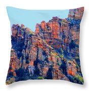 Desert Paint Throw Pillow