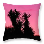 Desert Pink Throw Pillow
