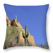 Desert Plants Of The Superstitions Throw Pillow