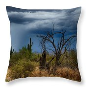 Desert Rains  Throw Pillow