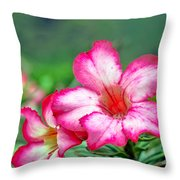 Desert Rose At Kualoa Throw Pillow
