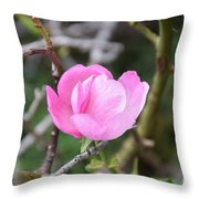 Desert Rose II Throw Pillow
