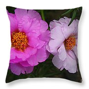 Desert Roses In Purple And Pink Throw Pillow
