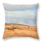 Desert Sand Throw Pillow
