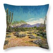 Desert Scene Near Carefree Throw Pillow