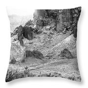 Desert Snowstorm Black And White Throw Pillow
