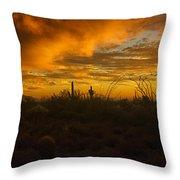 Desert Southwest Skies  Throw Pillow