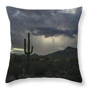 Desert Storm Beauty Throw Pillow