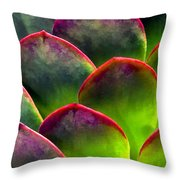 Desert Succulent In Bright Sun And Shade Throw Pillow