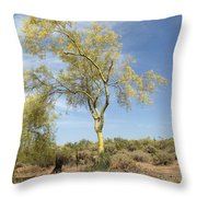Desert Tree Throw Pillow by Janice Sakry