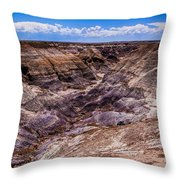 Desert Valley Throw Pillow