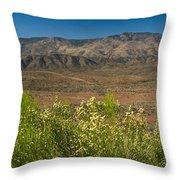 Desert Valley Scene 7 Throw Pillow
