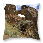 Desert Wildflowers Grand Arch  Throw Pillow