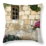 Deserted House Throw Pillow