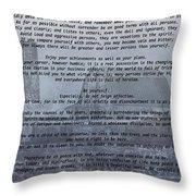 Desiderata Farm Throw Pillow