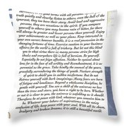Desiderata Sailing In Style Throw Pillow