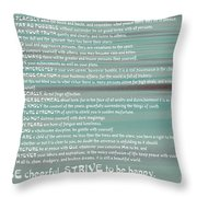 Desiderata 15 Throw Pillow