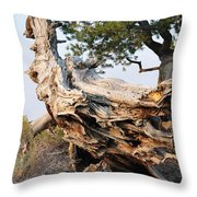 Design By The Desert Throw Pillow