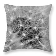 Designed To Fly Throw Pillow