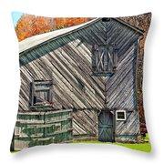Designer Barn 2 Throw Pillow