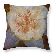 Designer Floral Throw Pillow