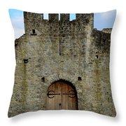 Desmond Castle Doors Throw Pillow
