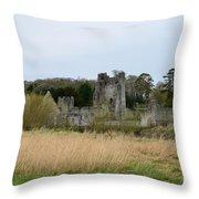 Desmond Castle Views Throw Pillow