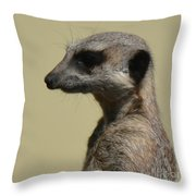 Desultory Meerkat Throw Pillow
