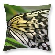 Detail Beauty Throw Pillow