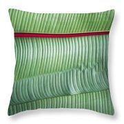Detail Of Banana Leaves Near Ngorogoro Throw Pillow