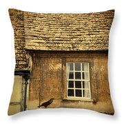 Detail Of Old House Throw Pillow