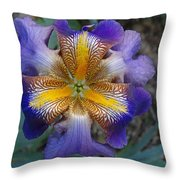 Detailed Iris Throw Pillow